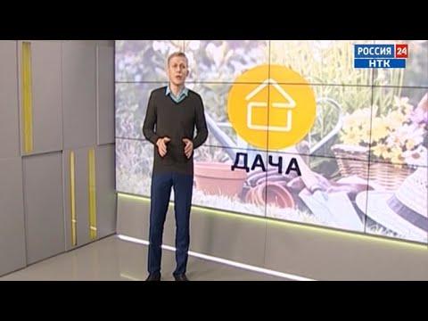 «Дача» за 30.03.2018. В Новосибирске растет спрос на садовые участки