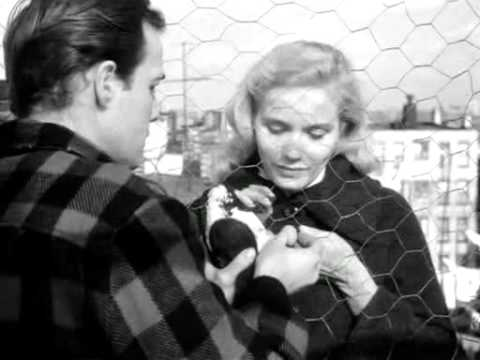 On the waterfront love scene