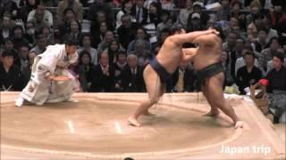 鶴竜 vs 高安の取組。2016大相撲春場所2日目。