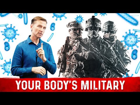 Your Immune System is a Highly Trained Military