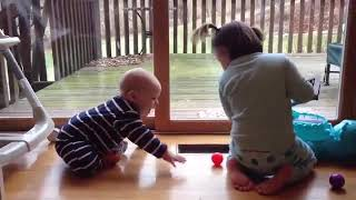 Funny Baby Fails In Action - Cute Baby Fail Videos 2020
