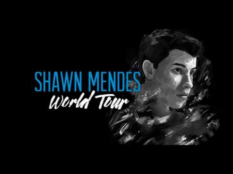 Shawn Mendes World Tour - Manila,...