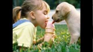 ¡Las siete mejores maravillas del mundo! - www.tispain.com