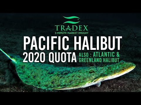 3MMI - 2020 Pacific Halibut Quota Announced, Atlantic Halibut, Greenland Halibut