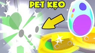 Roblox🐾 Pet Simulator | Open The Sweet Candy And Pet Egg Of Gold | MinhMaMa