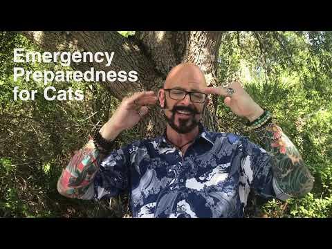 Emergency Preparedness for Animals
