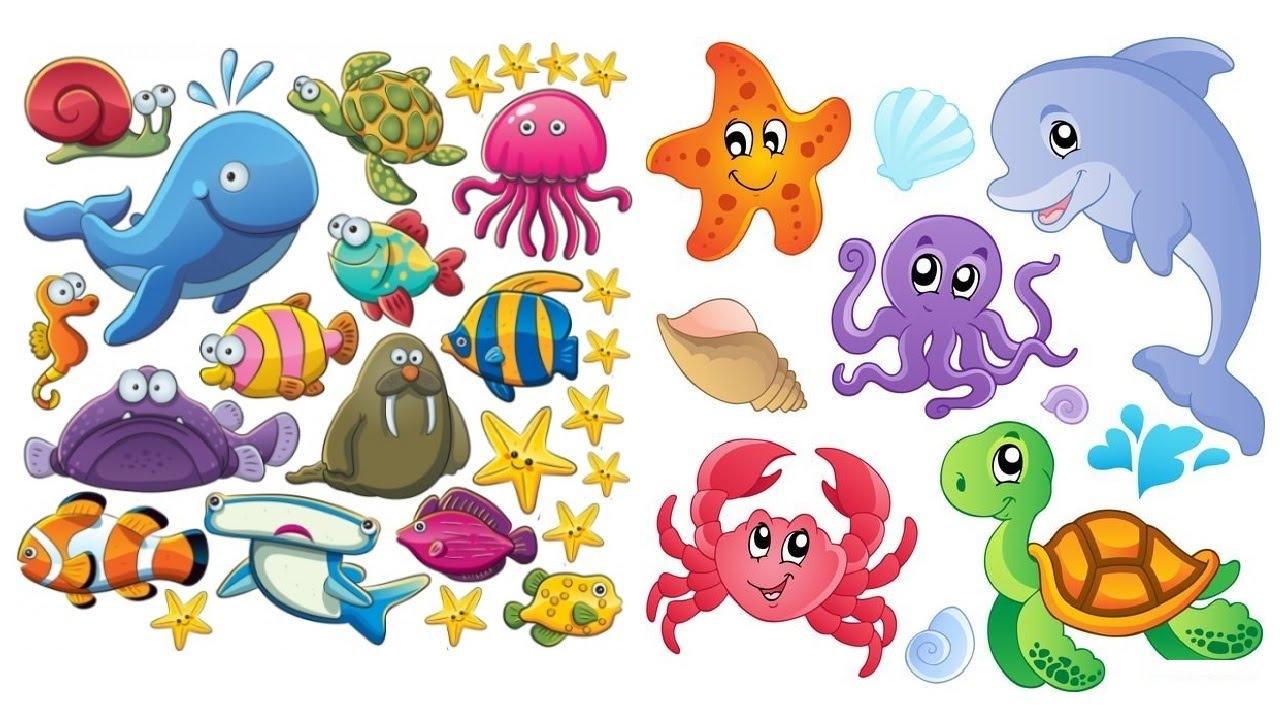 Картинки Для Детей Морские Обитатели