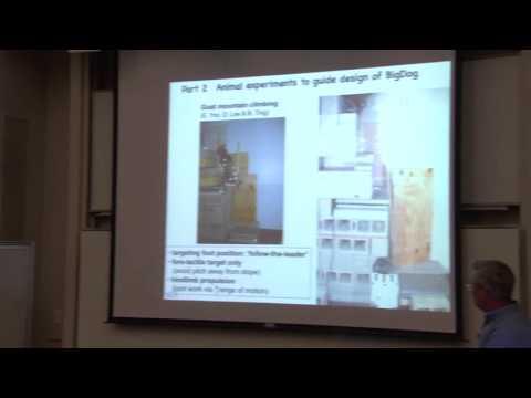 RI Seminar: Andrew Biewener : Animal models for robotic design: terrestrial and aerial locomotion