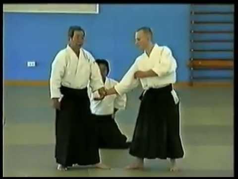 Aikido Hanmi