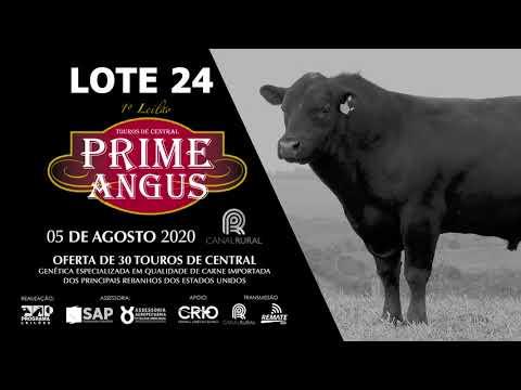 LOTE 24   BLACK OPAL TE920 FOGO DE CHÃO  Prod  Agência El Campo