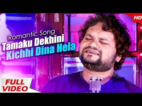 Tamaku Dekhini Kichhi Dina Hela |  New Odia Romantic Song | Human Sagar | Sidharth Music