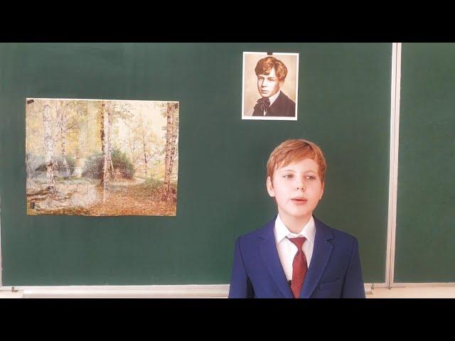 Изображение предпросмотра прочтения – ЮрийМиронов читает произведение «Берёза» С.А.Есенина