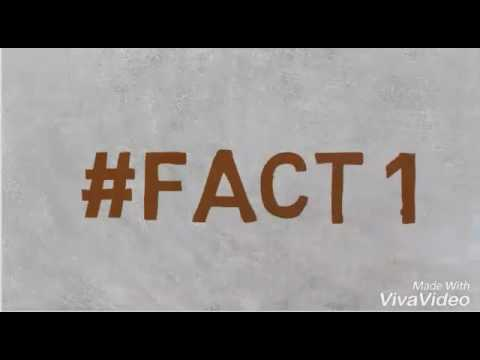 Amazing Cricket Facts in HINDI