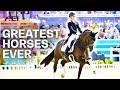 Valegro, Totilas & Co. |Horses of History