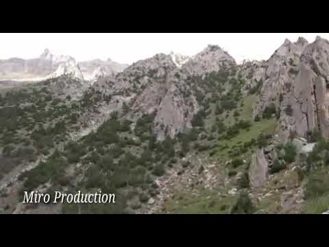 Ultar 2 Expedition Pics