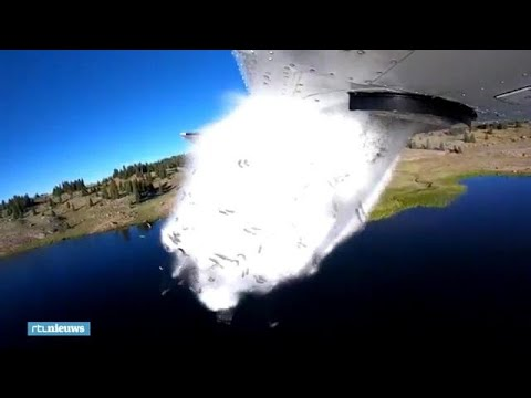 Het regent vissen in de Amerikaanse staat Utah - RTL NIEUWS