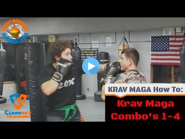 Krav Maga Combinations 1-4