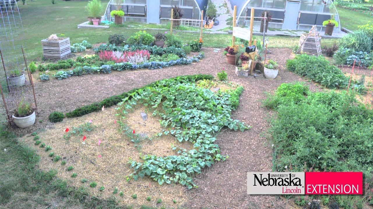 Backyard Farmer Garden Time Lapse - YouTube