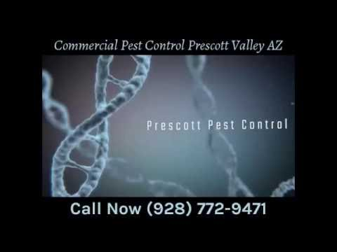 Commercial Pest Control Prescott Valley AZ