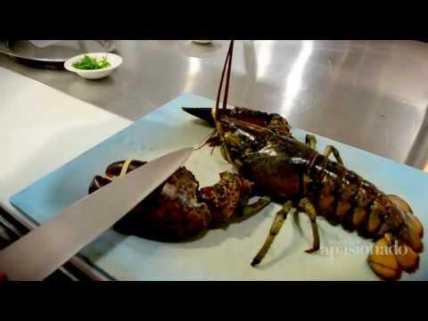 Langosta Bogavante con Mantequilla Clarificada / Lobster Bogavante with butter