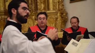 Corpus Christi 2019 - Abadía del Sacromonte