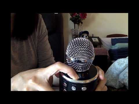 WSTER WS-858 Wireless Karaoke Bluetooth Microphone Review