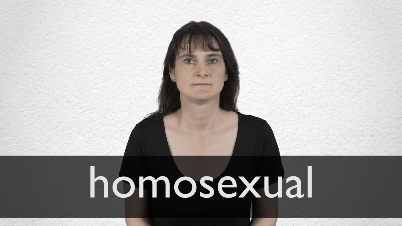 Traductor en línea con la traducción de gayness a 25 idiomas