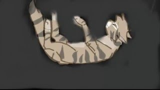 Коты Воители.Дар Звезд.Трейлер / Warriors Cats.Gift Stars.Trailer