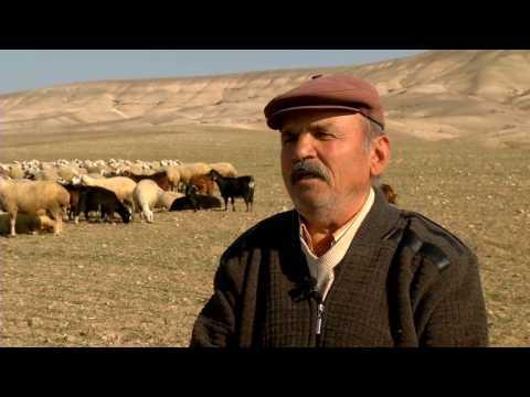 Sivas Kangal Belgeseli  Documentary of Sivas Kangal