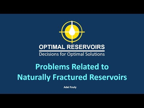 Problems Related to Naturally Fractured Reservoirs by Adel El Fouly