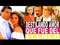 Destilando Amor Que fue de sus actores    Reportaje Especial