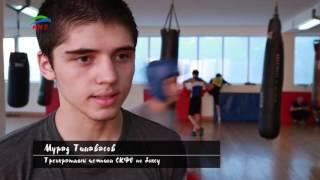 Детская газета № 77 (б). 2. Школа бокса.