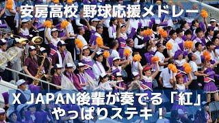安房高校メドレー X JAPAN後輩が奏でる「紅」はやっぱりステキ!(千葉県高校野球応援シリーズ2019)