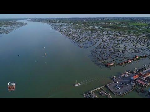 Cap Sud Ouest: la Seudre, histoires d'eaux