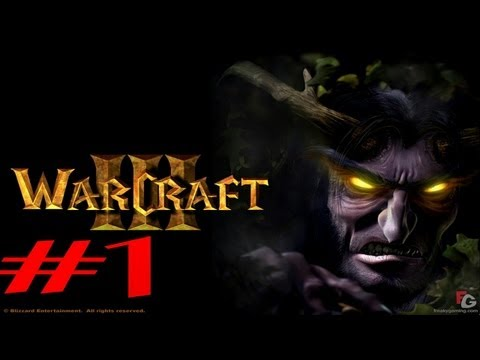 Warcraft III z