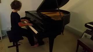 Schumann concerto pour piano (adaptation pour 2 pianos)