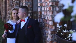 Петр и Ирина свадьба