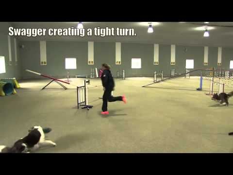 Tight Turns In Dog Agility...Video Two