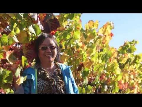 Family Tours-Luxury Napa Valley Tour-September 22-24, 2016