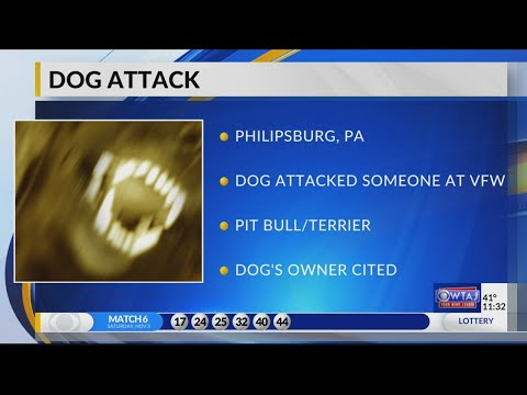 Philipsburg dog attack