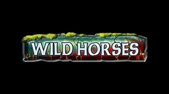 Wild Horses - Novoline Spiele - 10 Freispiele