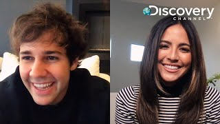 David Dobrik & Erin Lim's New Series 'Dodgeball Thunderdome' | Exclusive Interview