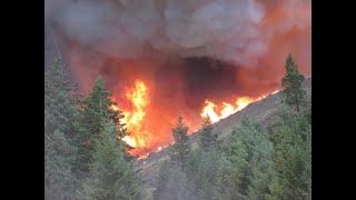 أخبار عالمية | اندلاع نحو 300 حريق في #البرتغال في يوم واحد