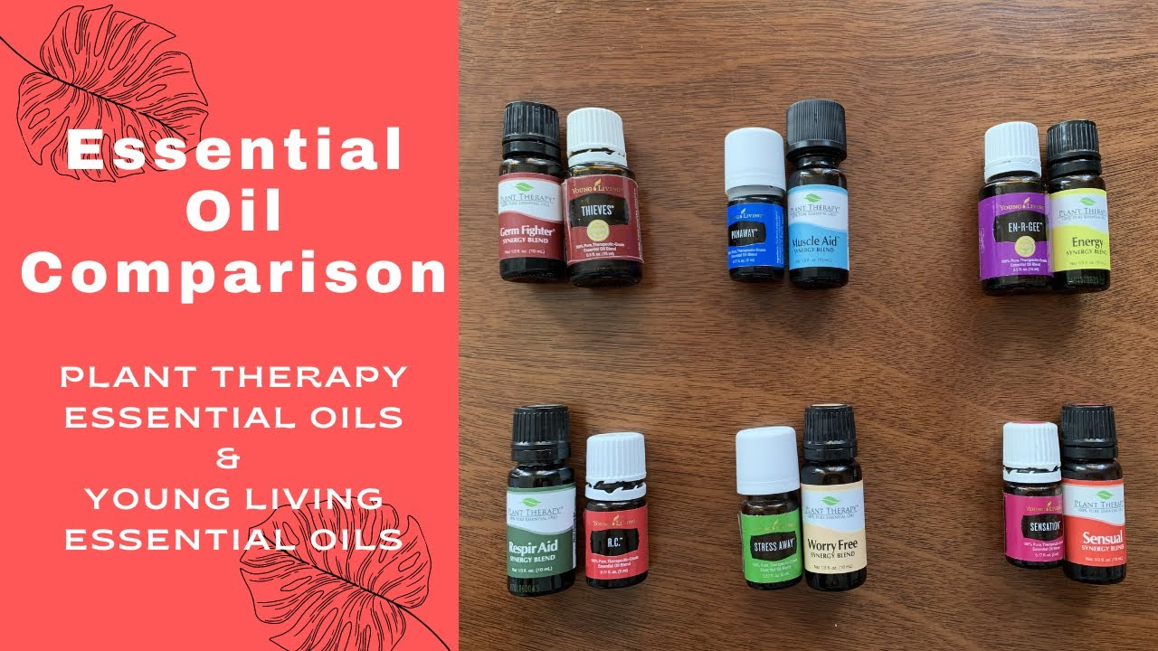Download PLANT THERAPY vs YOUNG LIVING | ESSENTIAL OIL COMPARISON | WHAT IS YOUR CHOICE?