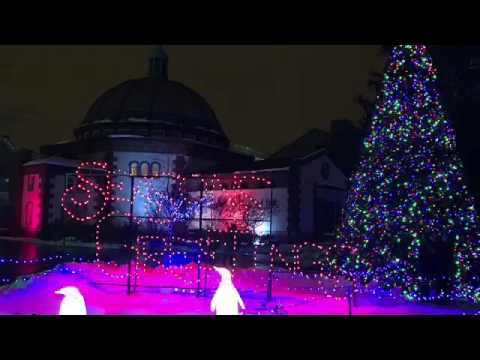 Detroit Zoo Christmas Lights.Detroit Zoo Wild Lights 2016