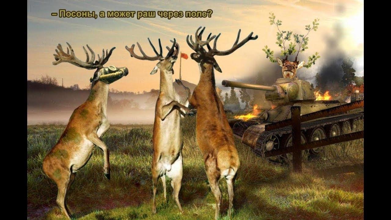Картинка олень в танке
