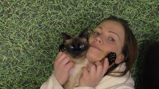 Кот Маркиз 26 лет. Самый старый кот в нашем городе а может и стране.
