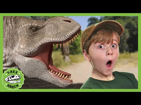 T-Rex Ranch Hunting for Dinosaurs! Jurassic Videos for Kids