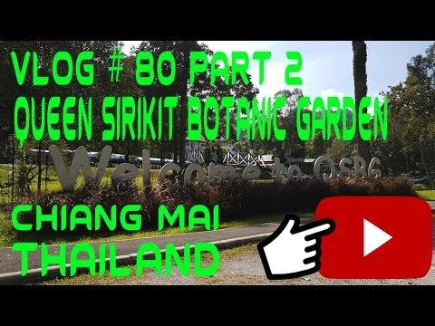 Snowbuff Coffee & Queen Sirikit Botanic Garden Chiang Mai Thailand