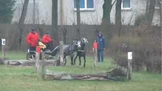 WERONIKA PIOTROWSKA wera-bogusławice maraton(3).mpg